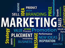 Sales and Marketing development